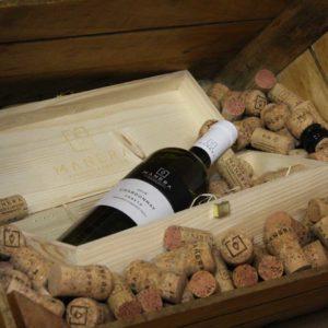 chardonnay-igt-vino-bianco-vitivinicola-manera-castelfranco-veneto