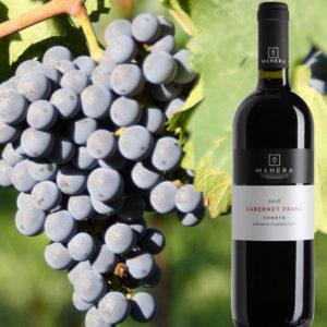 cabernet-franc-igt-vino-rosso-vitivinicola-manera-castelfranco-veneto