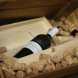 incrocio-manzoni-6013-igt-vino-bianco-vitivinicola-manera-castelfranco-veneto