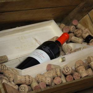 recantina-rosso-igt-veneto-vitivinicola-manera-castelfranco-veneto