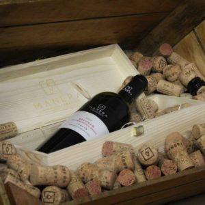 refosco-dal-peduncolo-rosso-igt-vino-vitivinicola-manera-castelfranco-veneto